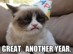 Forget all the Grumpy Cats and have a 2013 full of laugh and happiness. Thanks to all my Pinterest friends who made 2012 very interesting.