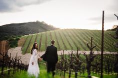 cloverdale outdoor wedding ceremony moments. teri b photography. europe photographer