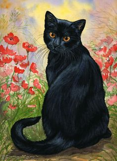 BLACK CAT POPPY FIELD 2 PRINT PAINTING ANNE MARSH ART