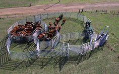 90 Head Working Capacity Cattle Yard