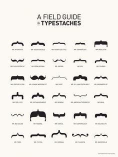 Les différentes moustaches de nos typographies, les TYPESTACHES  !