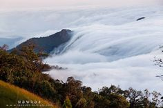 Mount Monchong, a magnificent scenic sight in Chiang Mai Province, Thailand, is where you can discover a natural phenomenon of the astonishing sea of clouds flowing from above to reach the earth. It is one of the best experiences yet.    *** Come and explore Amazing Thailand ***