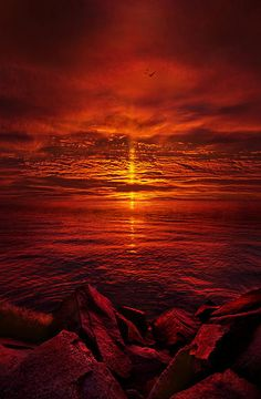 Sunrise Photograph - The Precipice by Phil Koch Beautiful Sunset, Beautiful Places, Beautiful Pictures, Amazing Sunsets, Amazing Nature, Amazing Places, Pics Art, Belle Photo, Mother Nature