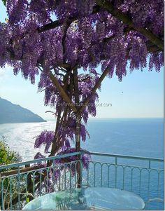 Waking up in Positano some days, is like looking out to paradise