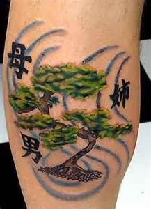 1000 images about bonsai tree tattoo on pinterest tree tattoos bonsai tree tattoos and. Black Bedroom Furniture Sets. Home Design Ideas