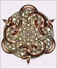 MC Escher - Snakes - woodcut in orange, green and black, printed from 3 blocks Op Art, Escher Kunst, Mc Escher Art, Drawn Art, Math Art, Dutch Artists, Optical Illusions, Printmaking, Snakes