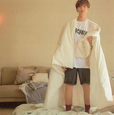 Woozi, Wonwoo, Jeonghan, Hoshi Seventeen, Seventeen Debut, Star In Japanese, Choi Hansol, Seventeen Wallpapers, Babe