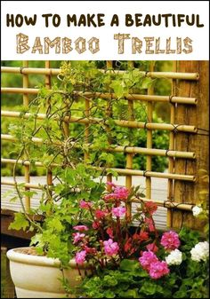 Need a trellis? Make one using the beautiful bamboo! By knowing how to tie them all together properly, you can have a beautiful trellis for your garden.