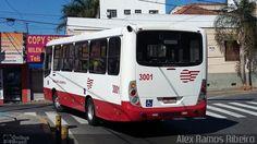 Ônibus da empresa Empresa de Ônibus Pássaro Marron, carro 3001, carroceria Comil…