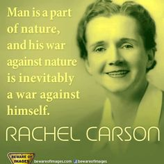 Rachel Carson  (1907 – 1964) marine biologist, science writer, her work helped ban a chemical called DDT that was killing millions of birds and fish