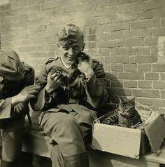 """Procrastinación gracias a Tumblr y a sus """"Nazis con gatitos"""". Todavía no doy crédito…"""