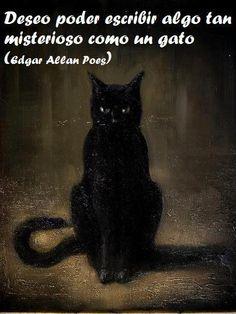 deseo poder escribir algo tan misterioso como un gato - edgar allan poe