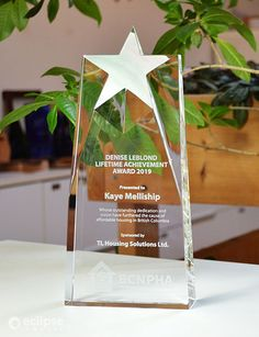 Our largest star trophy is perfect to recognize an invaluable member of your team. The Supreme Star is a custom award that has ample room for engraving text and graphics. #crystaltrophydesign #recognitionideas #crystalawardstrophy #appreciationgifts #crystalawardtrophy #employeeaward #personalizedplaques #personalizedgift #customaward Glass Awards, Crystal Awards, Star Trophy, Employee Awards, Personalized Plaques, Trophy Design, Custom Awards, Lifetime Achievement Award, Recognition Awards