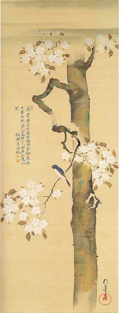 Small Bird and Cherry Tree  ---  by  Sakai Hoitsu  ( 酒井抱一, Japanese, 19th century )