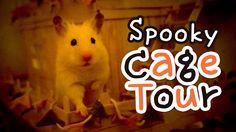 123 Best Hamster Images Kids Room Miniature Houses Modern