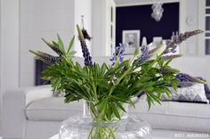 #flowers #livingroom #marimekko #urna #kotiauroassa #kannustalo