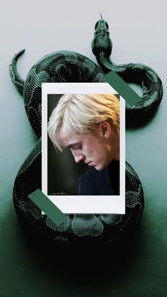 Harry Potter Draco Malfoy, Harry Potter Characters, Harry Potter Fandom, Harry Potter Memes, Draco Malfoy Aesthetic, Slytherin Aesthetic, Harry Potter Aesthetic, Slytherin Pride, Drarry