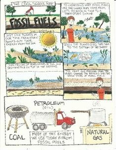 Fossil Fuels – True or False? View – Free Science Worksheet for ...