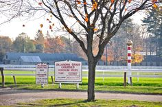 Oklahoma Training Track, #Saratoga Springs, NY  I lived 2 blocks from here. Could hear the horses whinnying from our yard!