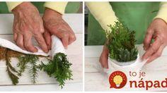 Trik s plienkou a plastovým vreckom – je úplne zadarmo a budete mať vďaka nemu plnú záhradu drahých ihličnanov!