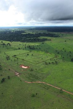 Land Carvings Attest to Amazon's Lost World - Geoglyphs, geometric designs carved into the earth, have become increasingly visible with the deforestation of the Amazon.