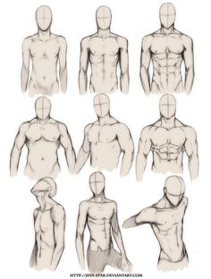 How to Draw the Human Body - Study: Male Body Types Comic / Manga Character Reference