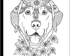 art of labrador single coloring page