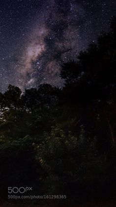 Milky Way peeking over the tree tops  Image credit: http://ift.tt/29etveF Visit http://ift.tt/1qPHad3 and read how to see the #MilkyWay  #Galaxy #Stars #Nightscape #Astrophotography