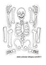 Dibujos del esqueleto para colorear, recortar y armar.