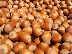 Hazelnuts are very healthy despite having high oil content and high calories. They are healthier than many other nuts. See four great recipes for hazelnut spreads. Oral Allergy Syndrome, Equador Quito, Vitamine B12, Gain Weight Fast, Weight Loss, Protein, Vegetable Garden, Gardening Tips, Organic Gardening