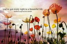 you've got every right to a beautiful life