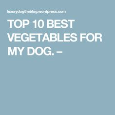 TOP 10 BEST VEGETABLES FOR MY DOG. –