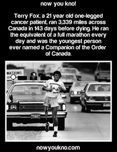 Fun fact, Terry Foxes mum lives in my city! For school, all the schools in Canada run a fundraiser off cancer in his name.««« We do and it my school we even did a race every year Canadian Things, I Am Canadian, Canadian History, The More You Know, Good To Know, Did You Know, Order Of Canada, Canada Eh, Wtf Fun Facts