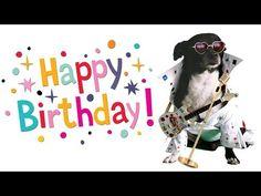 10 Happy Bday Ideas Funny Happy Birthday Song Happy Birthday Funny Happy Birthday Song