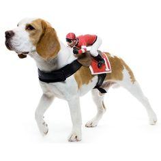 Jockey Dog Rider Pet Costume | Fancy Crave