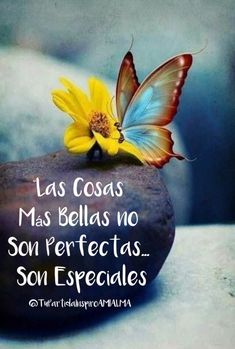 Salud Tutorial and Ideas Gods Love Quotes, Best Quotes, Life Quotes, Positive Phrases, Positive Quotes, Good Morning Inspirational Quotes, Spanish Quotes, Hindi Quotes, Christian Quotes