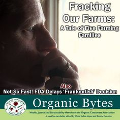 Organic Bytes #368 2/21/2013: Fracking Our Farms, Frankenfish, and Our Lunch Counter Moment