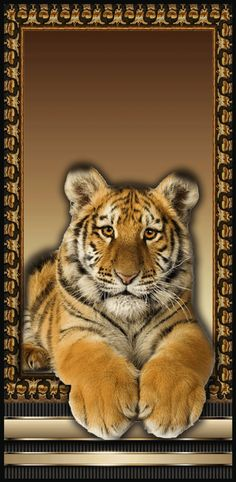 - My best shares Big Cats Art, Cat Art, Wallpaper Pictures, Animal Wallpaper, Fantasy Art Men, Amazing Gifs, Welcome To The Jungle, Naruto Characters, Pretty Wallpapers