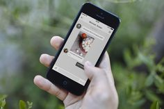 Pinterest Rolls Out Messaging So Pinners Can Have Conversations Around Shared Pins | TechCrunch