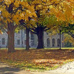 Emory University | 41 Scenic College Campuses That Were Made For Instagram