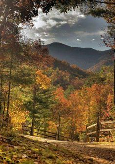 These 20 Epic Places In Kentucky Will Leave Your Jaw On The Floor - - Mother Nature has provided a bountiful array of breathtaking scenery all across Kentucky and we picked 20 to showcase. Autumn Scenery, All Nature, Fall Pictures, Belle Photo, Beautiful Landscapes, The Great Outdoors, Mother Nature, Nature Photography, Photography Lessons
