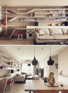 Built-in Shelves Designed with Cats in Mind