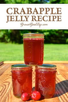 Transform the tart flavor of crabapples into a delicious homemade crabapple jelly. Crabapples have enough natural pectin so no additional pectin is needed for this crabapple jelly recipe. Crab Apple Recipes, Jelly Recipes, Jam Recipes, Canning Recipes, Canning Tips, Cooker Recipes, Yummy Recipes, Crabapple Jelly Recipe, Crab Apple Jelly