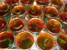 Gummy Worm Jello Shots!  GREAT for Halloween parties!!!