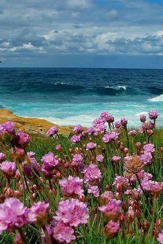 Lina Karra is beautiful ! Beautiful Nature Pictures, Amazing Nature, Beautiful Landscapes, Beautiful World, S5 Wallpaper, Landscape Photography, Nature Photography, Beach Scenes, Ciel
