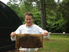 Renting hives for crop pollination has become a big business.