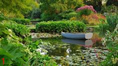 England Beth Chatto Gardens, Northeast of London  MUST GO!
