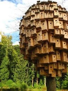 oh my - bob verschueren bird houses  Bird House Ideas http://socialaffiliate.wix.com/bird-houses http://buildbirdhouses.blogspot.ca/