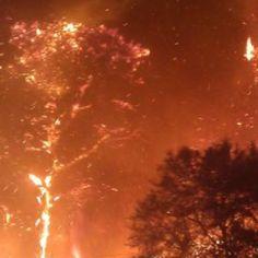 2011 Wildfire - Bastrop, Texas Bastrop Texas, Fire Tornado, Wildland Firefighter, Fire Fighters, Firefighting, Volcanoes, Earth, Outdoor, Firemen
