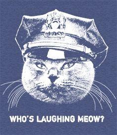 Who's Laughing Meow...ahaha